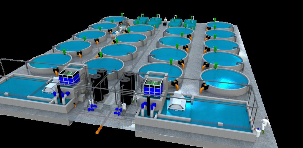 Kreislaufanlage für die Aquakultur